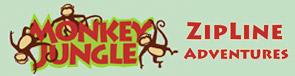 Monkey-jungle zipline-adventure
