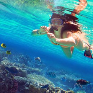 Tropical beaches and snorkeling