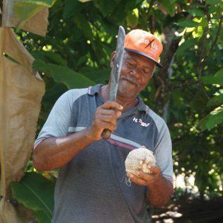 Plantación ``La Jagua``